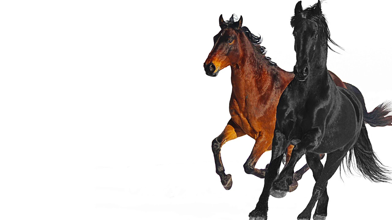 Old town road billy ray cyrus